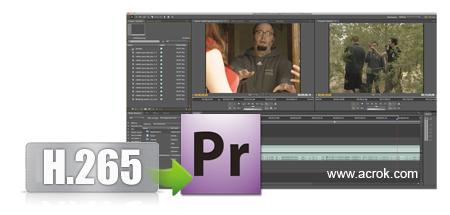 Premiere Pro CC H.265 - Import H.265 Files to Premiere Pro CC